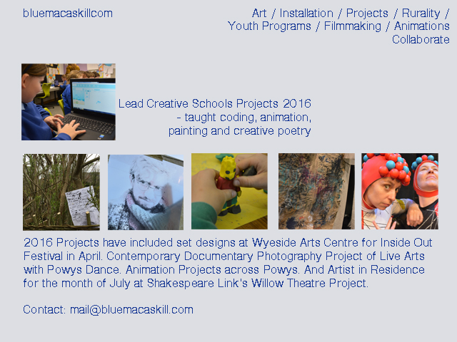 blue macaskill artist and filmmaker